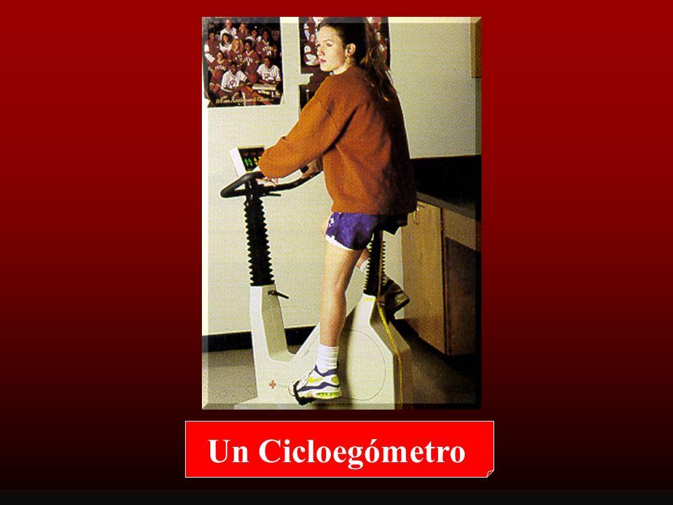 Cicloergómetro: Ventajas Facilita la medición de la presión arterial y la toma muestra sanguíneas porque el cuerpo superior se encuentra relativamente