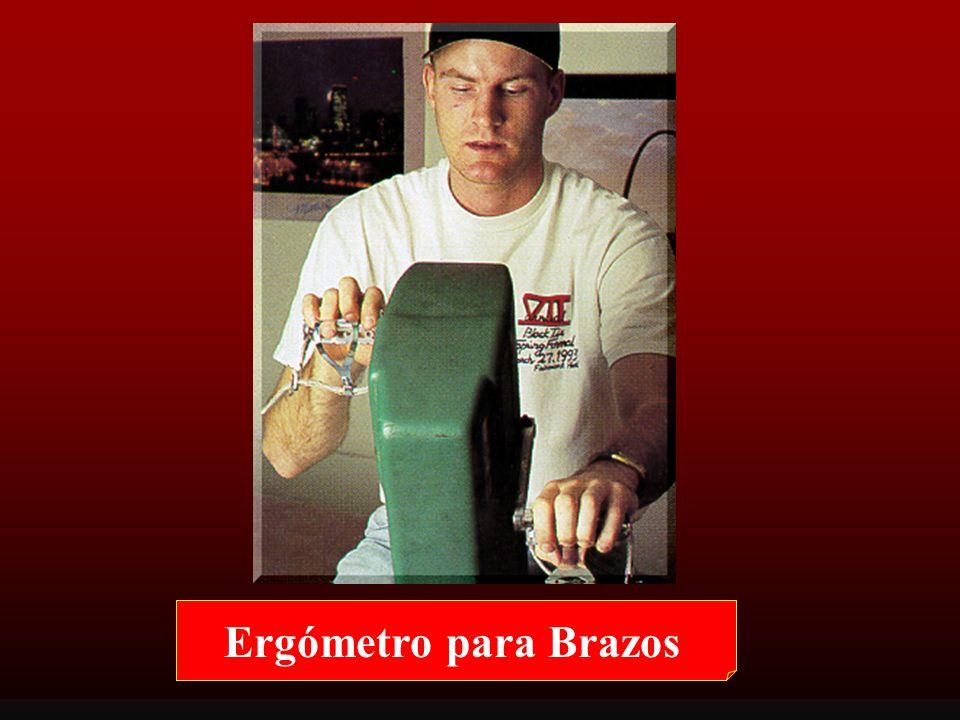 ERGOMETR Í A: Utilización de Ergómetros Ergómetros Específicos para Deportes: » Ergómetros para los brazos » Remoergómetro » Ergómetro de Winsurf Tipo