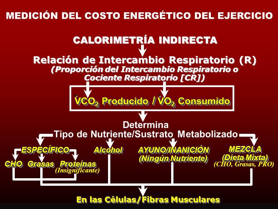 PROPORCIÓN DEL INTERCAMBIO RESPIRATORIO El valor de la RER en reposo es usualmemte de 0.78 a 0.80 La proporcióm entre el CO 2 liberado (VCO 2 ) y el o