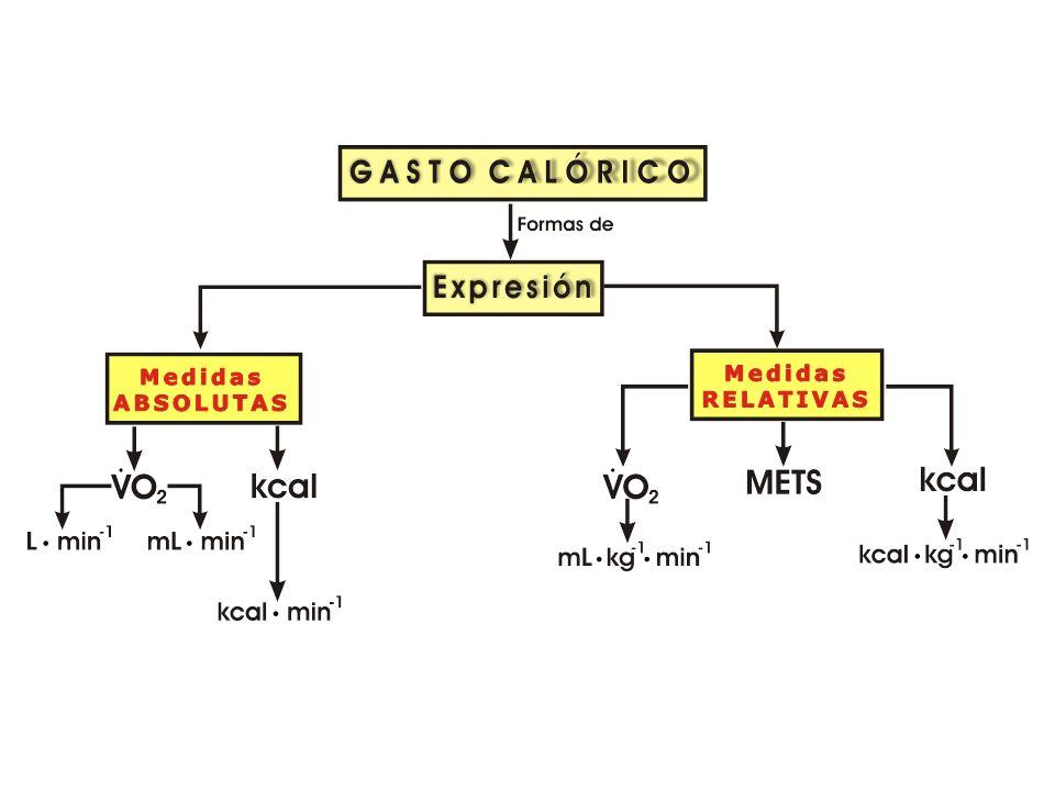 Medición del Costo Energético del Ejercicio 1 L O 2 consumido/min 5 kcal/L ESTIMACIÓN