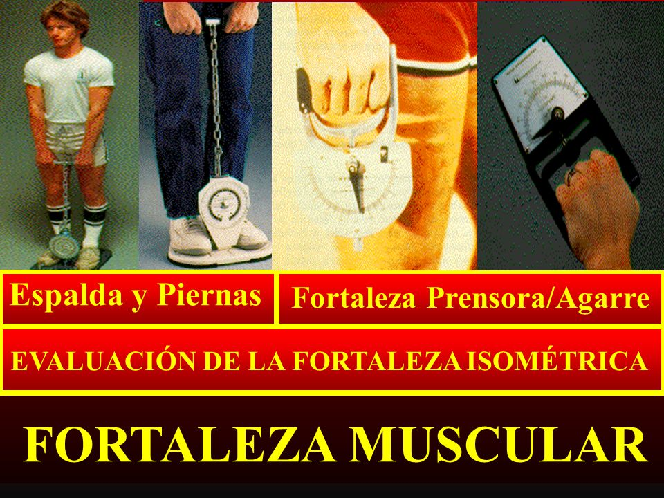 TOLERANCIA MUSCULAR SENTADILLAS Y LAGARTIJAS DOMINADAS