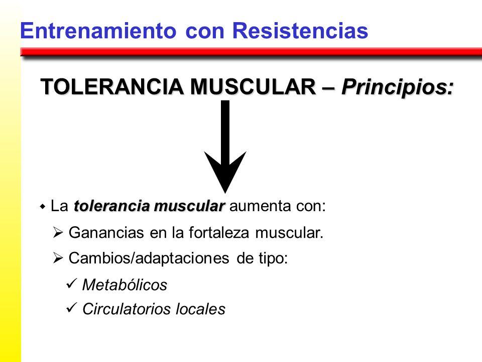 Entrenamiento con Resistencias TOLERANCIA MUSCULAR – Principios: tolerancia muscular La tolerancia muscular aumenta con: Ganancias en la fortaleza mus