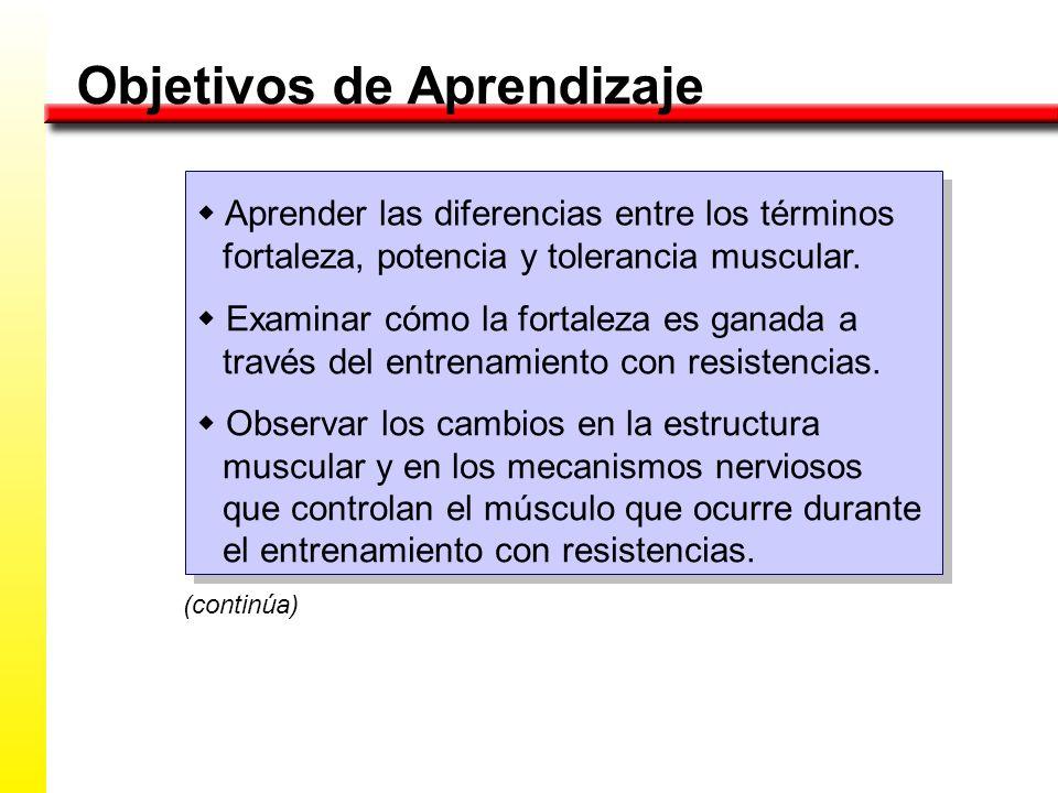 Objetivos de Aprendizaje Aprender las diferencias entre los términos fortaleza, potencia y tolerancia muscular. Examinar cómo la fortaleza es ganada a