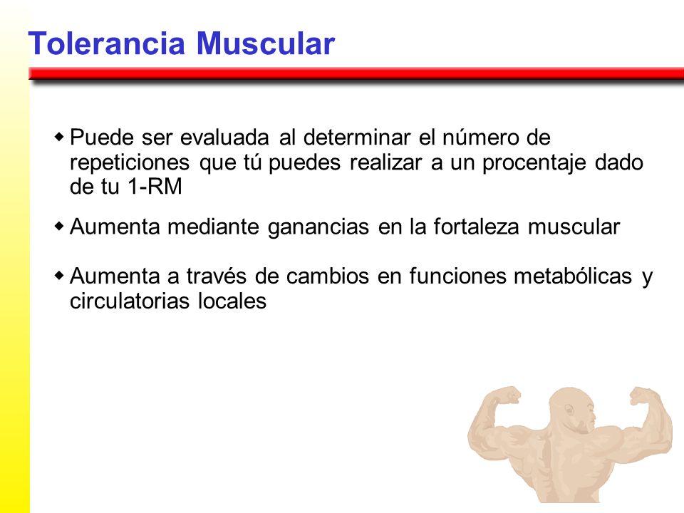 Tolerancia Muscular Puede ser evaluada al determinar el número de repeticiones que tú puedes realizar a un procentaje dado de tu 1-RM Aumenta mediante