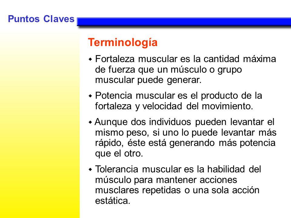 Fortaleza muscular es la cantidad máxima de fuerza que un músculo o grupo muscular puede generar. Potencia muscular es el producto de la fortaleza y v