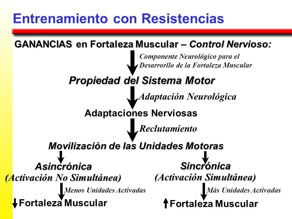 Entrenamiento con Resistencias GANANCIAS en Fortaleza Muscular – Control Nervioso: Propiedad del Sistema Motor Componente Neurológico para el Desarror