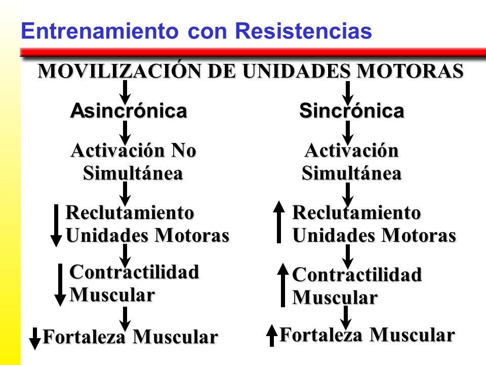 Entrenamiento con Resistencias MOVILIZACIÓN DE UNIDADES MOTORAS AsincrónicaSincrónica Activación Simultánea Activación No Simultánea Contractilidad Mu