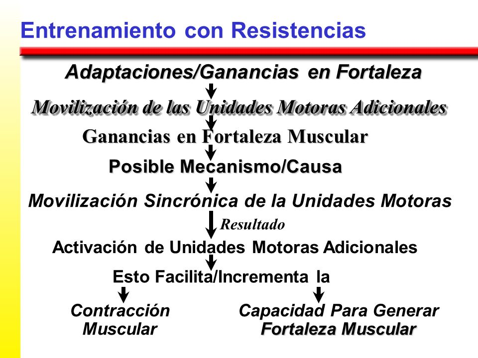 Entrenamiento con Resistencias Adaptaciones/Ganancias en Fortaleza Ganancias en Fortaleza Muscular Movilización de las Unidades Motoras Adicionales Po