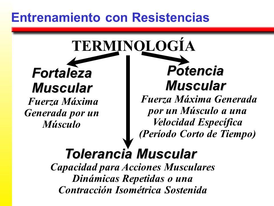 Entrenamiento con Resistencias FortalezaMuscular TERMINOLOGÍA PotenciaMuscular Tolerancia Muscular Fuerza Máxima Generada por un Músculo Fuerza Máxima