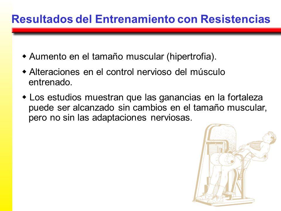 Resultados del Entrenamiento con Resistencias Aumento en el tamaño muscular (hipertrofia). Alteraciones en el control nervioso del músculo entrenado.