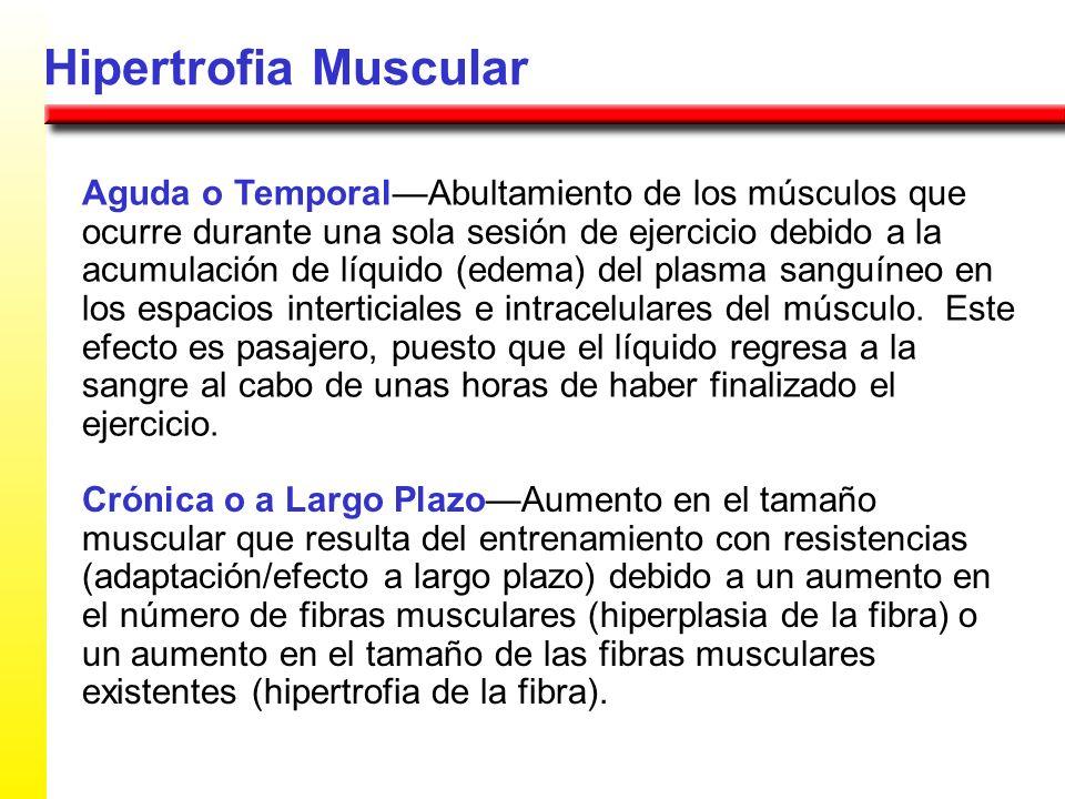 Hipertrofia Muscular Aguda o TemporalAbultamiento de los músculos que ocurre durante una sola sesión de ejercicio debido a la acumulación de líquido (