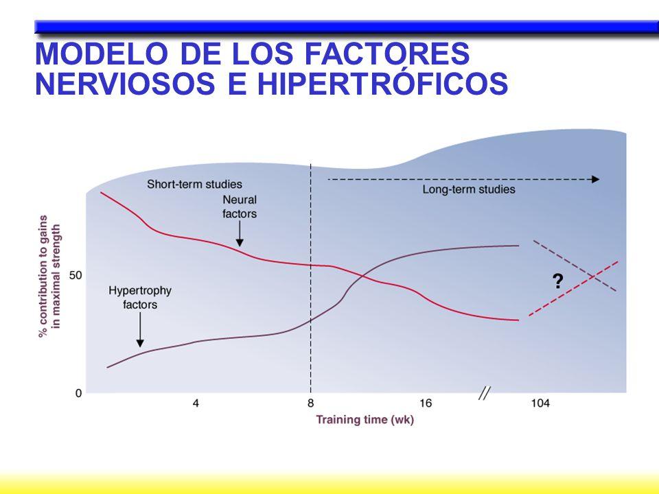 MODELO DE LOS FACTORES NERVIOSOS E HIPERTRÓFICOS