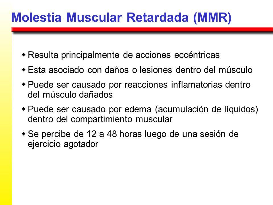 Molestia Muscular Retardada (MMR) Resulta principalmente de acciones eccéntricas Esta asociado con daños o lesiones dentro del músculo Puede ser causa