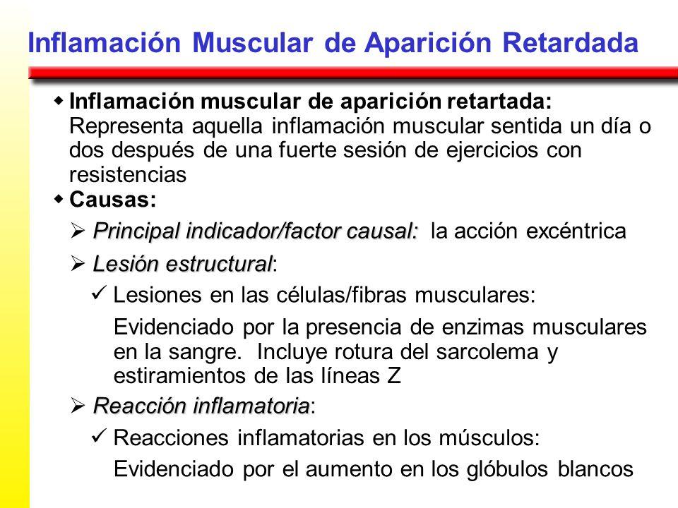 Inflamación Muscular de Aparición Retardada Inflamación muscular de aparición retartada: Representa aquella inflamación muscular sentida un día o dos
