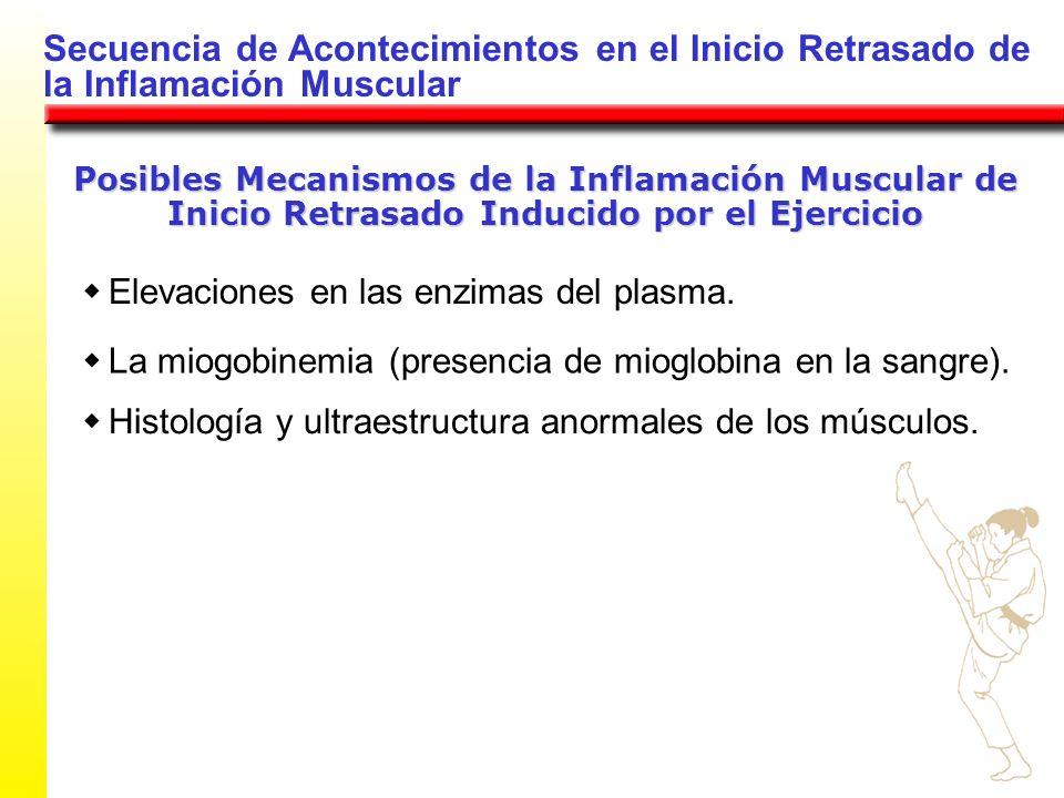 Secuencia de Acontecimientos en el Inicio Retrasado de la Inflamación Muscular Posibles Mecanismos de la Inflamación Muscular de Inicio Retrasado Indu