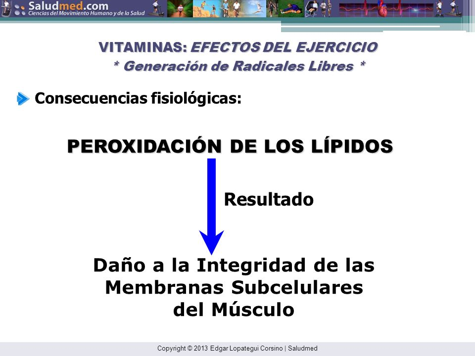 Copyright © 2013 Edgar Lopategui Corsino   Saludmed NOTA. Reproducido de: Sports and Exercise Nutrition. 4ta. ed.; (p. 60), por W. D. McArdle, F. I. K