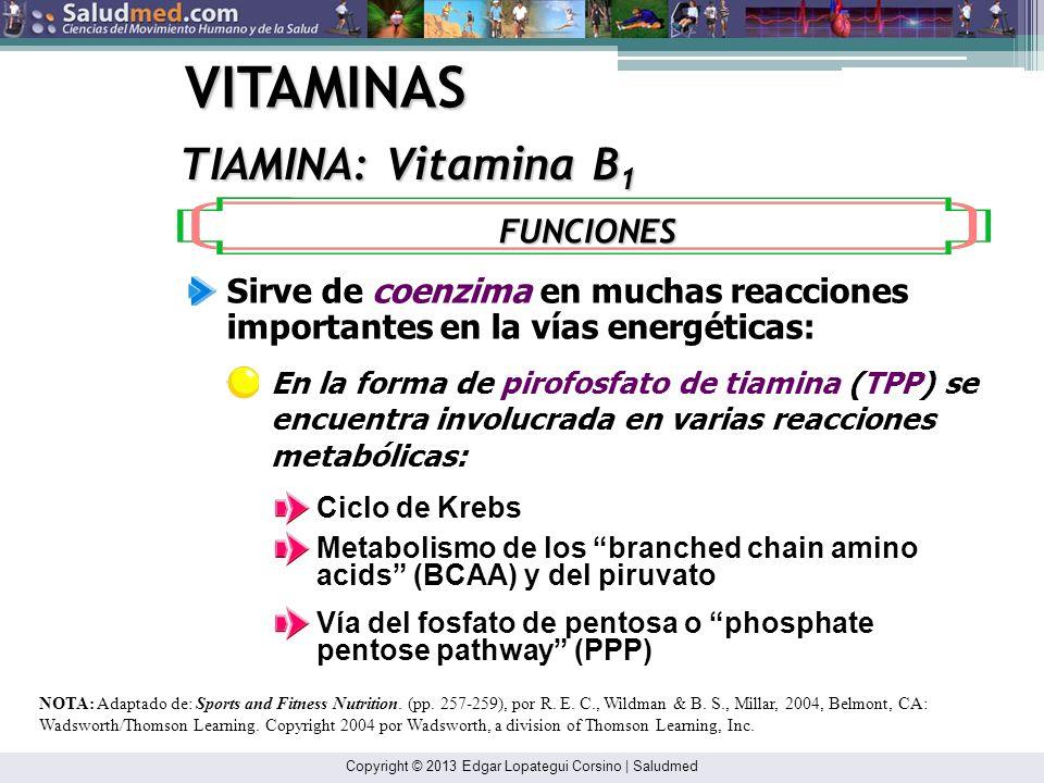 Copyright © 2013 Edgar Lopategui Corsino | Saludmed VITAMINAS TIAMINA: Vitamina B 1 La tiamina transportada en la sangre se une principalmente a las p