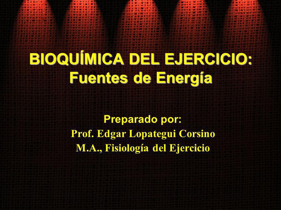 BIOQUÍMICA DEL EJERCICIO: Fuentes de Energía Preparado por: Prof. Edgar Lopategui Corsino M.A., Fisiología del Ejercicio