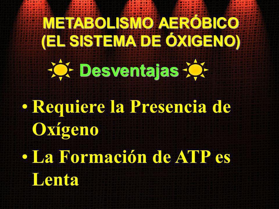 METABOLISMO AERÓBICO (EL SISTEMA DE ÓXIGENO) Requiere la Presencia de Oxígeno La Formación de ATP es Lenta Desventajas