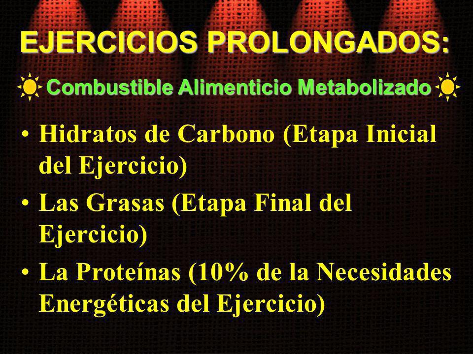 Hidratos de Carbono (Etapa Inicial del Ejercicio) Las Grasas (Etapa Final del Ejercicio) La Proteínas (10% de la Necesidades Energéticas del Ejercicio