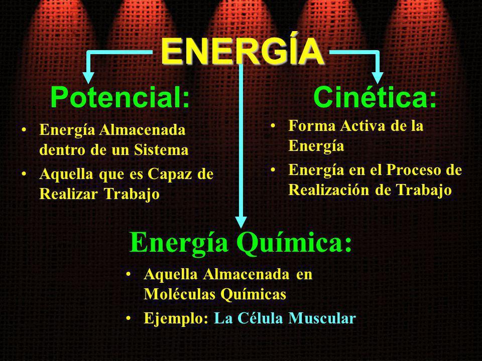 ENERGÍA Potencial: Energía Almacenada dentro de un Sistema Aquella que es Capaz de Realizar Trabajo Cinética: Forma Activa de la Energía Energía en el