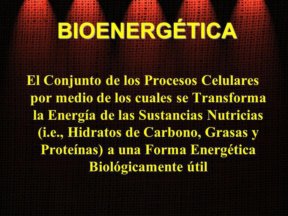 BIOENERGÉTICA El Conjunto de los Procesos Celulares por medio de los cuales se Transforma la Energía de las Sustancias Nutricias (i.e., Hidratos de Ca