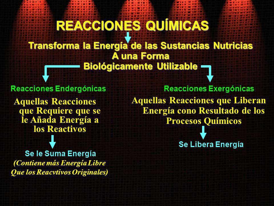 REACCIONES QUÍMICAS Reacciones Endergónicas Aquellas Reacciones que Requiere que se le Añada Energía a los Reactivos Aquellas Reacciones que Liberan E