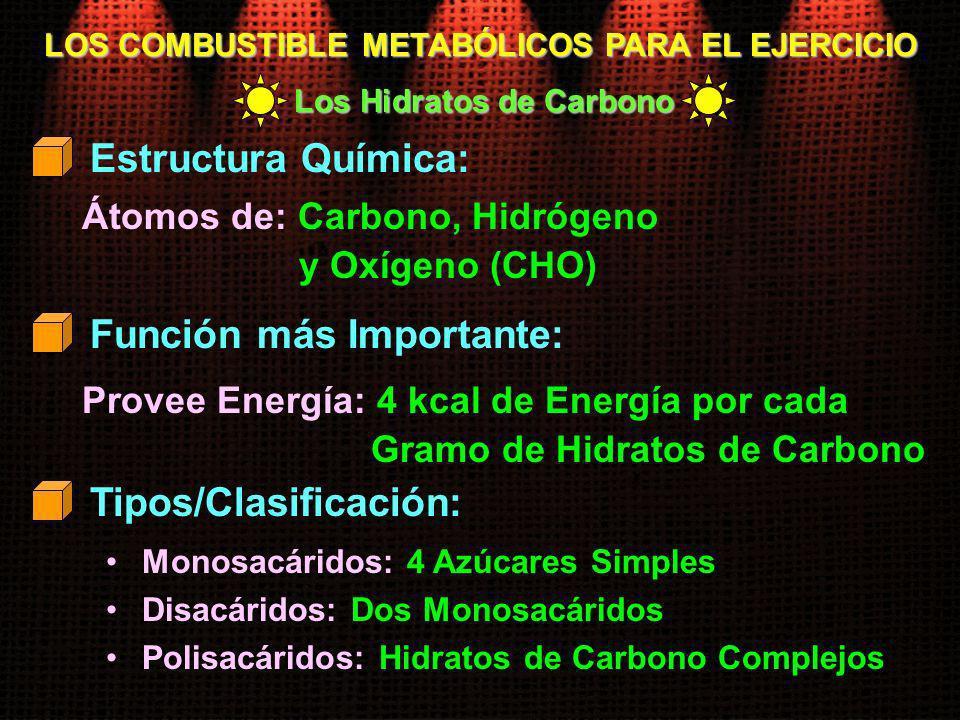 LOS COMBUSTIBLE METABÓLICOS PARA EL EJERCICIO Átomos de: Carbono, Hidrógeno y Oxígeno (CHO) Estructura Química: Provee Energía: 4 kcal de Energía por
