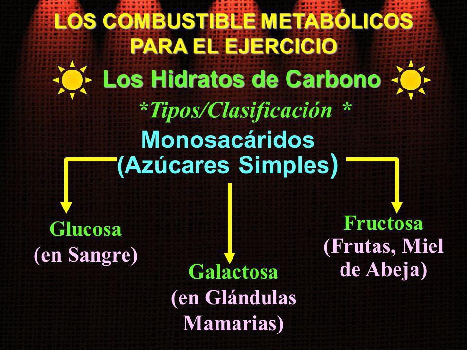 Glucosa (en Sangre) LOS COMBUSTIBLE METABÓLICOS PARA EL EJERCICIO Los Hidratos de Carbono Monosacáridos (Azúcares Simples ) Galactosa (en Glándulas Ma