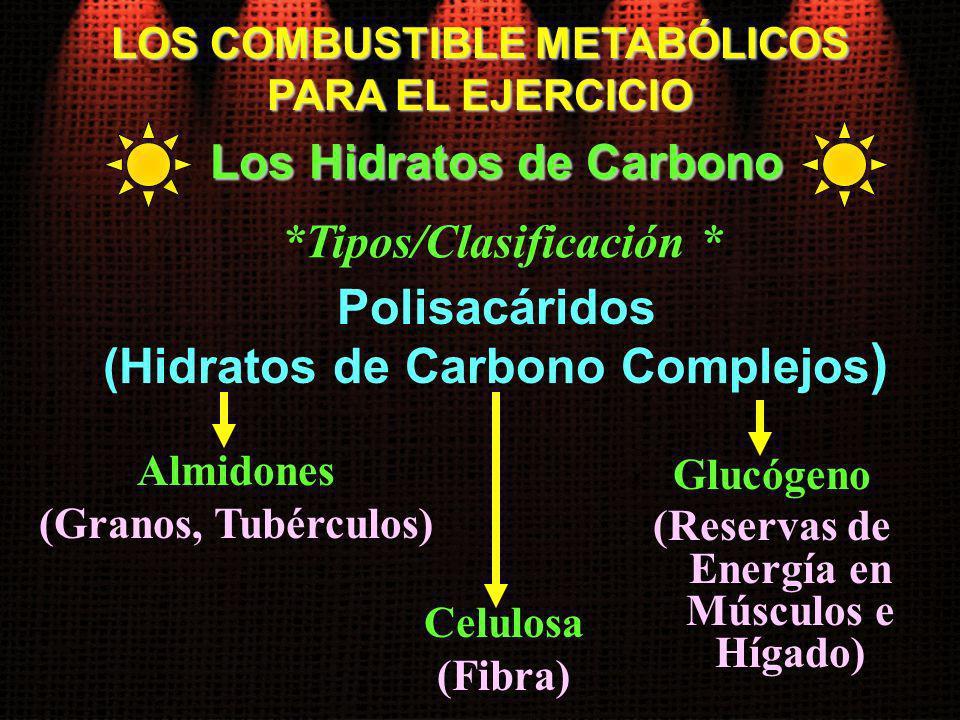 Almidones (Granos, Tubérculos) LOS COMBUSTIBLE METABÓLICOS PARA EL EJERCICIO Los Hidratos de Carbono Polisacáridos (Hidratos de Carbono Complejos ) Ce