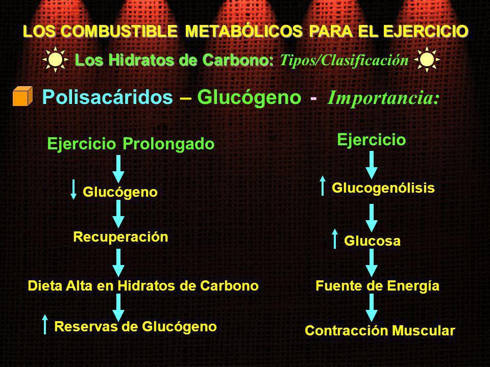 LOS COMBUSTIBLE METABÓLICOS PARA EL EJERCICIO Los Hidratos de Carbono: Los Hidratos de Carbono: Tipos/Clasificación Polisacáridos – Glucógeno - Import