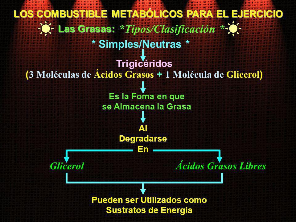 LOS COMBUSTIBLE METABÓLICOS PARA EL EJERCICIO Las Grasas: Es la Foma en que se Almacena la Grasa Al Degradarse En Glicerol Pueden ser Utilizados como