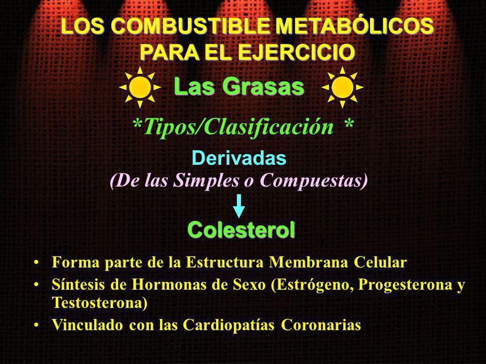 LOS COMBUSTIBLE METABÓLICOS PARA EL EJERCICIO Las Grasas *Tipos/Clasificación * Derivadas (De las Simples o Compuestas) Forma parte de la Estructura M