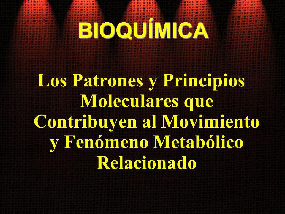 BIOQUÍMICA Los Patrones y Principios Moleculares que Contribuyen al Movimiento y Fenómeno Metabólico Relacionado