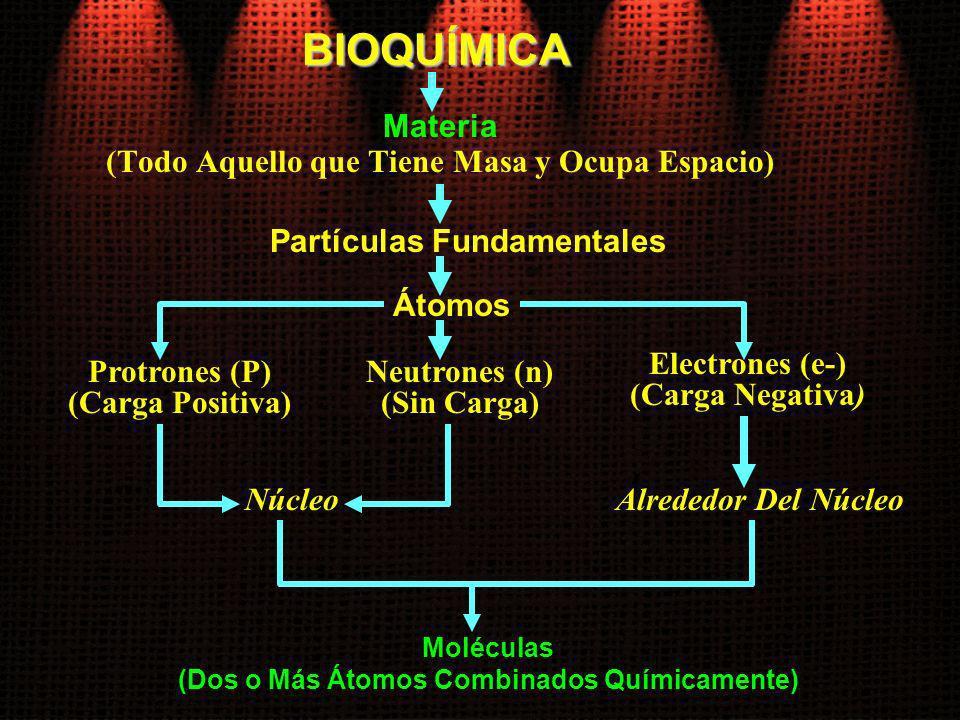 BIOQUÍMICA Materia (Todo Aquello que Tiene Masa y Ocupa Espacio) Protrones (P) (Carga Positiva) Partículas Fundamentales Moléculas (Dos o Más Átomos C