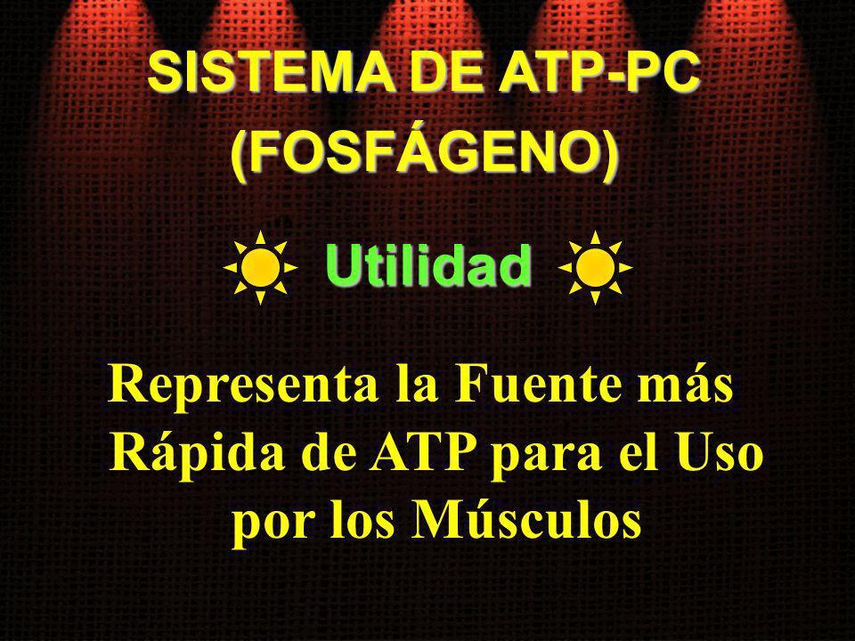 (FOSFÁGENO) Representa la Fuente más Rápida de ATP para el Uso por los Músculos Utilidad