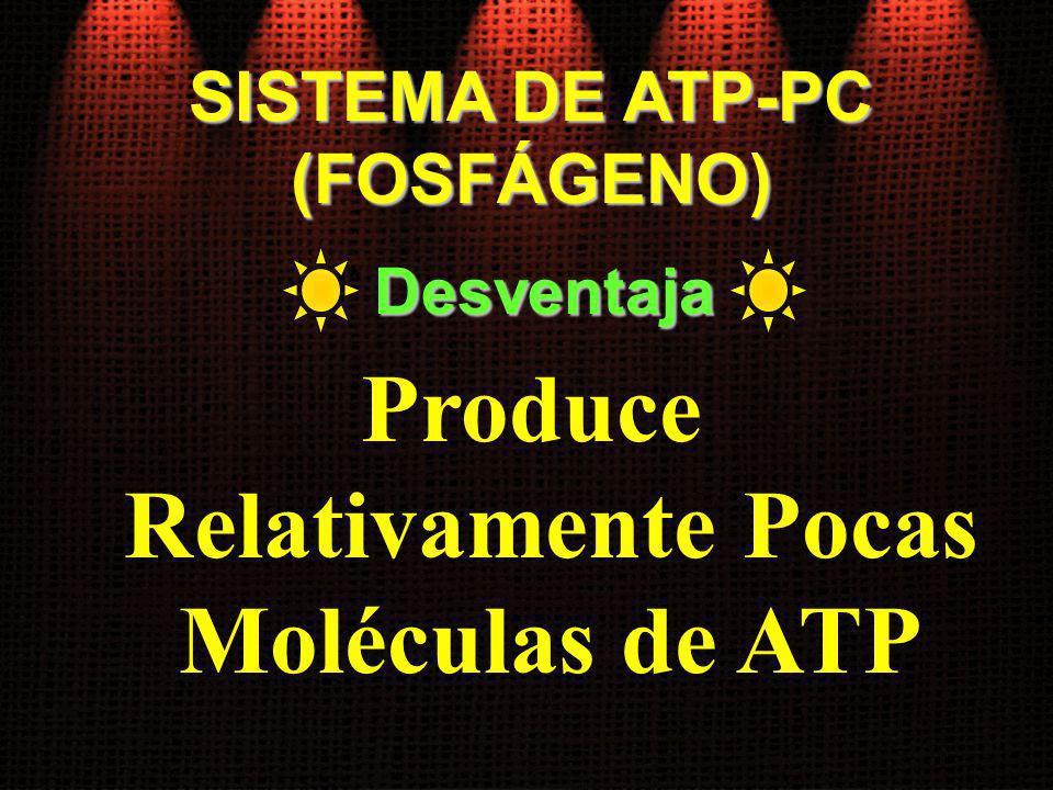 SISTEMA DE ATP-PC (FOSFÁGENO) Produce Relativamente Pocas Moléculas de ATP Desventaja