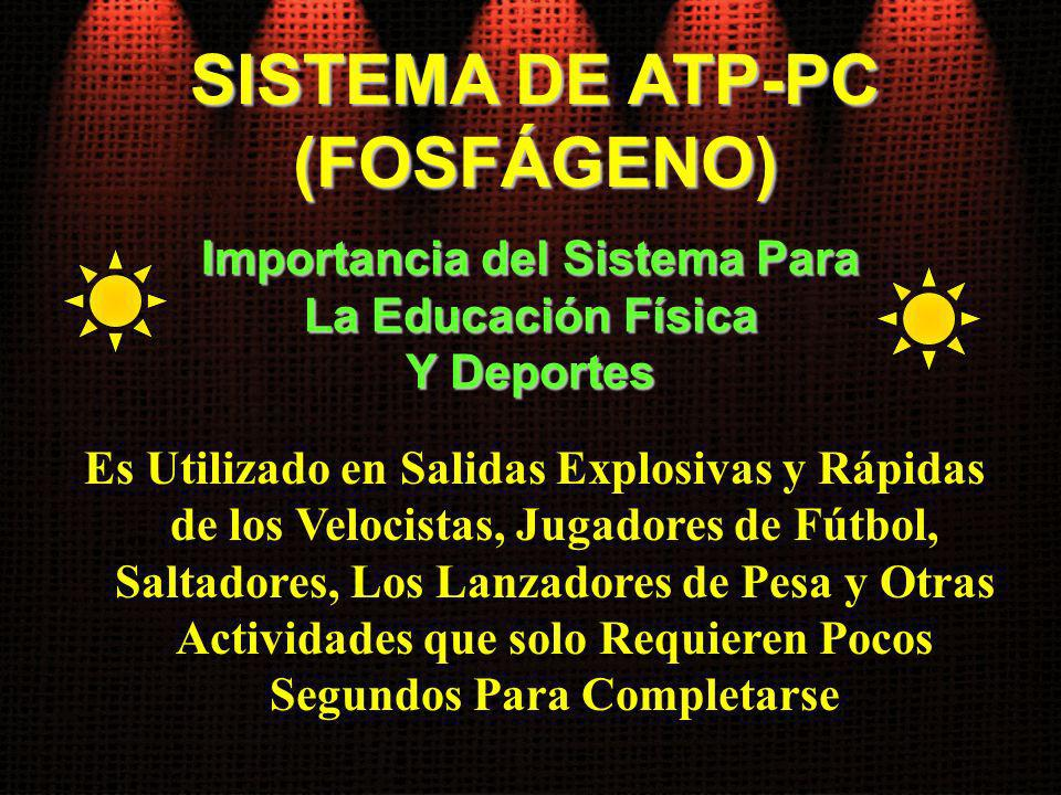 SISTEMA DE ATP-PC (FOSFÁGENO) Es Utilizado en Salidas Explosivas y Rápidas de los Velocistas, Jugadores de Fútbol, Saltadores, Los Lanzadores de Pesa