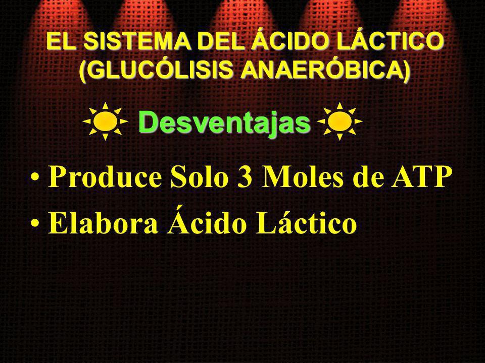 EL SISTEMA DEL ÁCIDO LÁCTICO (GLUCÓLISIS ANAERÓBICA) Produce Solo 3 Moles de ATP Elabora Ácido Láctico Desventajas