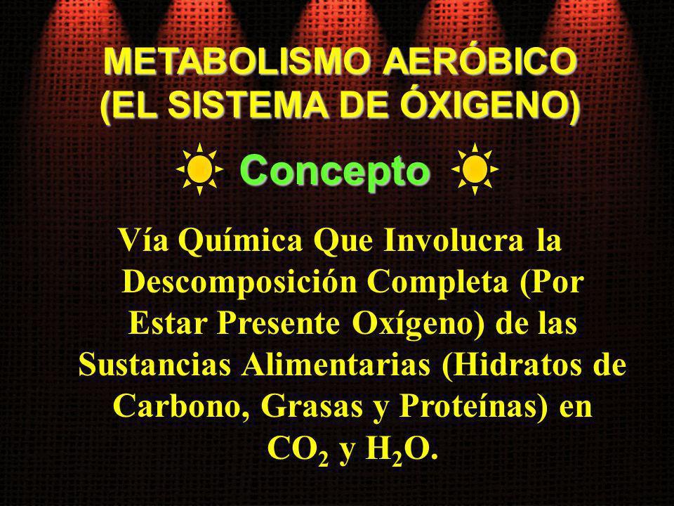METABOLISMO AERÓBICO (EL SISTEMA DE ÓXIGENO) Vía Química Que Involucra la Descomposición Completa (Por Estar Presente Oxígeno) de las Sustancias Alime