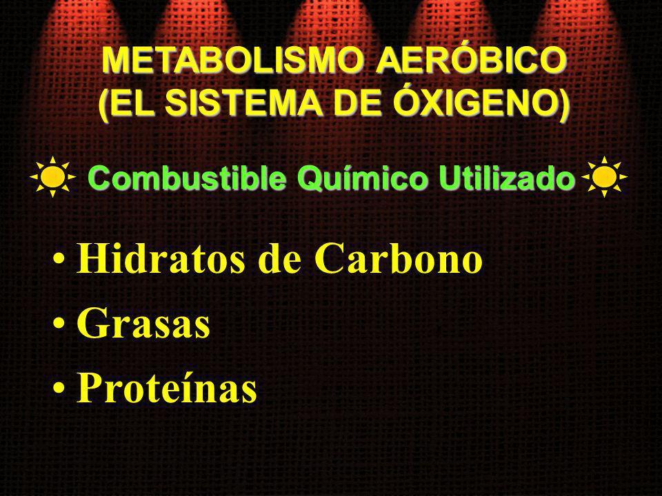 METABOLISMO AERÓBICO (EL SISTEMA DE ÓXIGENO) Hidratos de Carbono Grasas Proteínas Combustible Químico Utilizado