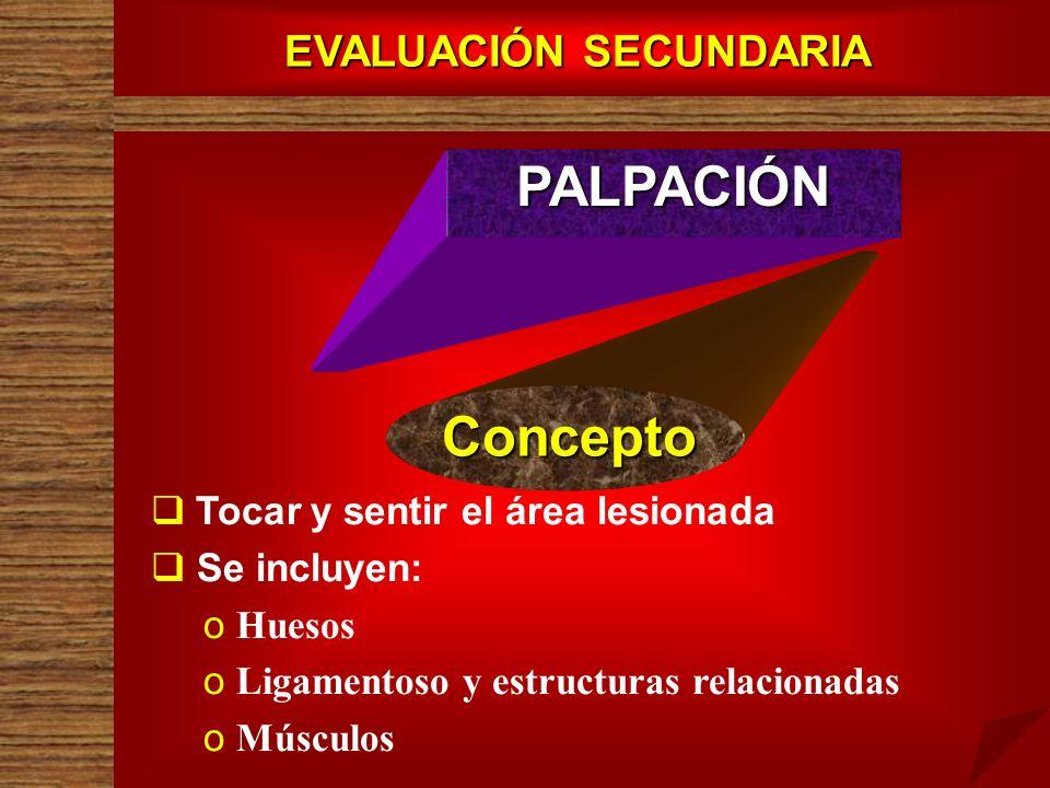 EVALUACIÓN SECUNDARIA PALPACIÓN Concepto Tocar y sentir el área lesionada Se incluyen: o o Huesos o o Ligamentoso y estructuras relacionadas o o Múscu