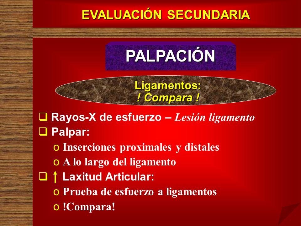EVALUACIÓN SECUNDARIA PALPACIÓN Rayos-X de esfuerzo – Lesión ligamento Palpar: o o Inserciones proximales y distales o o A lo largo del ligamento Laxi