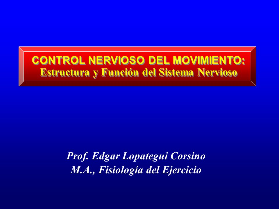 CONTROL NERVIOSO DEL MOVIMIENTO: Estructura y Función del Sistema Nervioso Prof. Edgar Lopategui Corsino M.A., Fisiología del Ejercicio