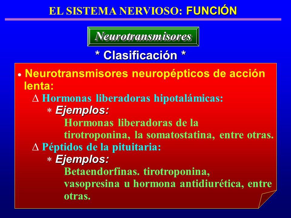 FUNCIÓN EL SISTEMA NERVIOSO: FUNCIÓN * Clasificación * NeurotransmisoresNeurotransmisores Neurotransmisores neuropépticos de acción lenta: Hormonas li