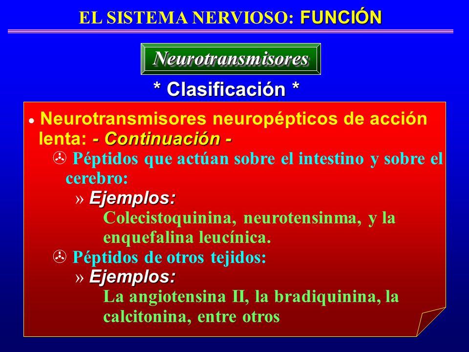 FUNCIÓN EL SISTEMA NERVIOSO: FUNCIÓN * Clasificación * NeurotransmisoresNeurotransmisores Neurotransmisores neuropépticos de acción - Continuación - l