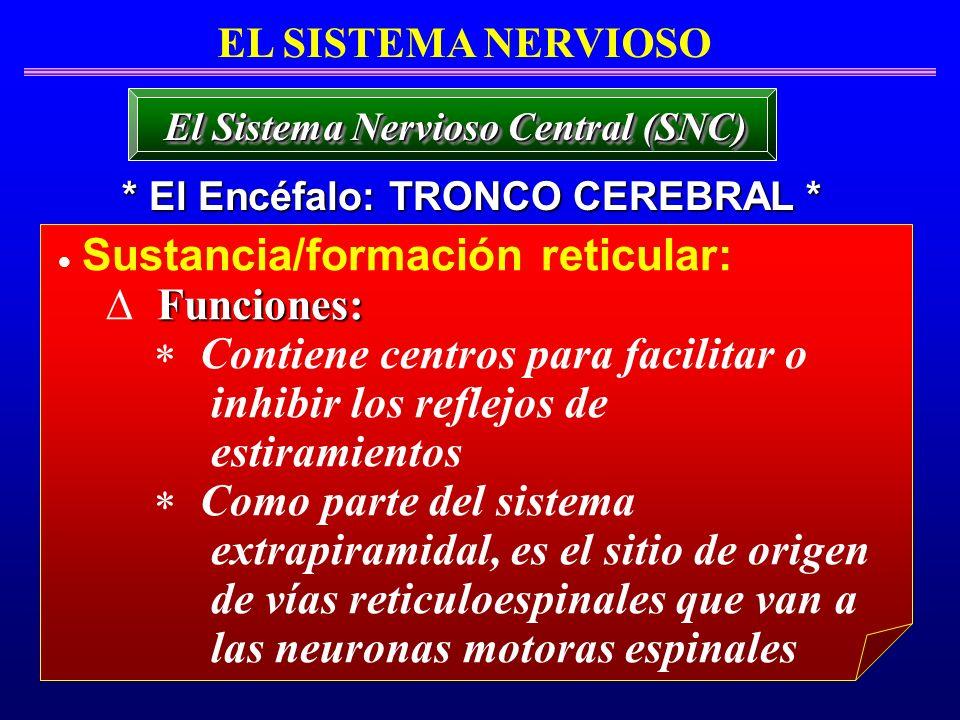Sustancia/formación reticular: Funciones: Contiene centros para facilitar o inhibir los reflejos de estiramientos Como parte del sistema extrapiramida