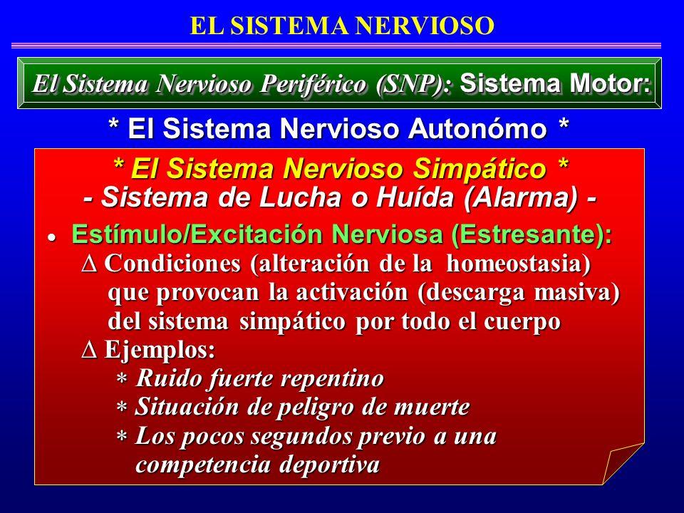 Estímulo/Excitación Nerviosa (Estresante): Estímulo/Excitación Nerviosa (Estresante): Condiciones (alteración de la homeostasia) Condiciones (alteraci