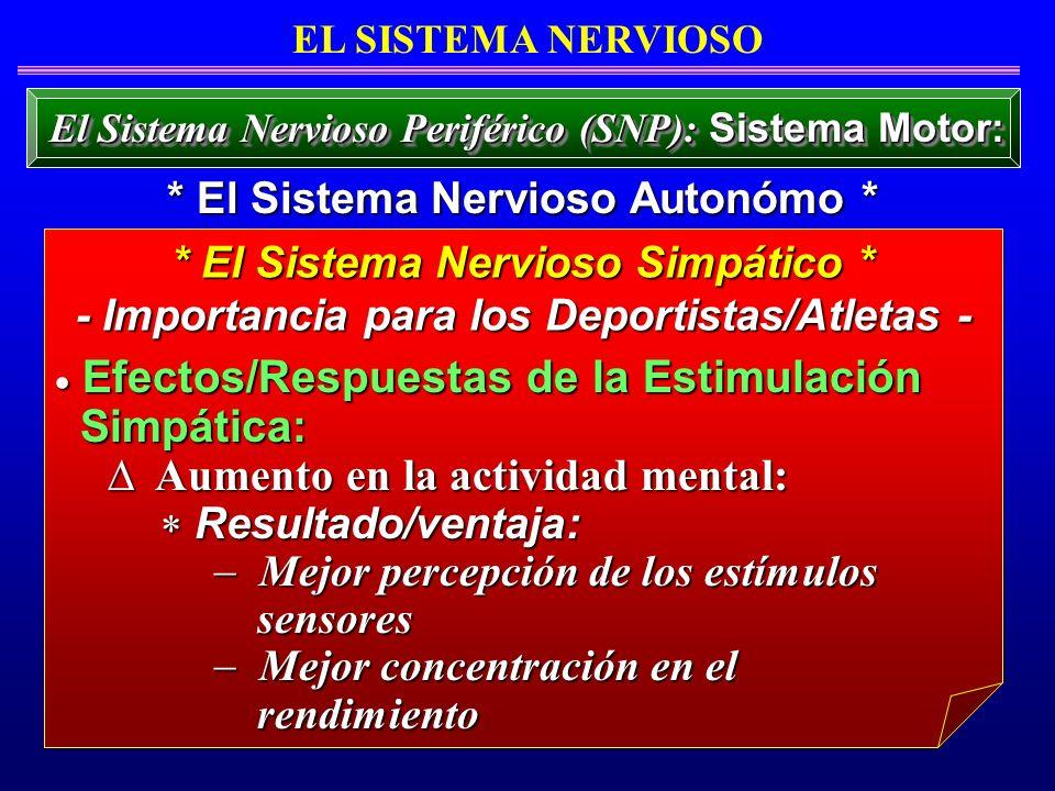 Efectos/Respuestas de la Estimulación Efectos/Respuestas de la Estimulación Simpática: Simpática: Aumento en la actividad mental: Aumento en la activi