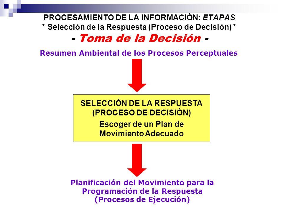 Planificación del Movimiento para la Programación de la Respuesta (Procesos de Ejecución) SELECCIÓN DE LA RESPUESTA (PROCESO DE DECISIÓN) PROCESAMIENT